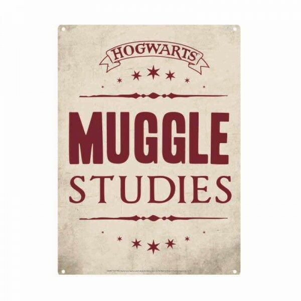 Harry Potter Muggle Studies Sign