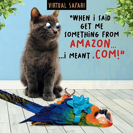Virtual Safari Amazon Card