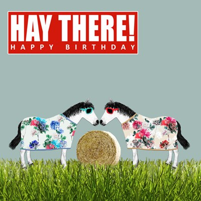 Hay There Happy Birthday Card