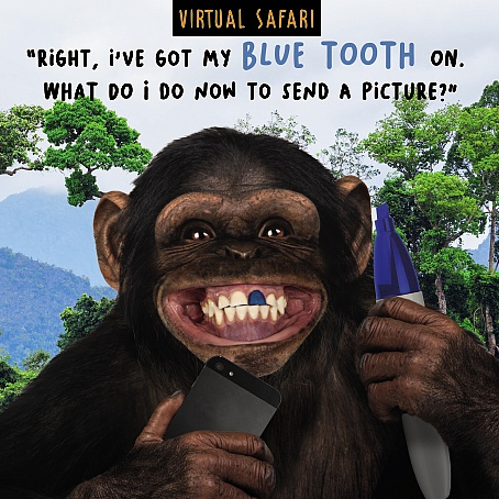 Virtual Safari Blue Tooth Card