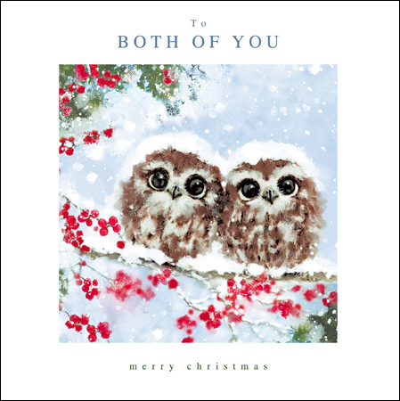 Both Of You Merry Christmas Owls Card