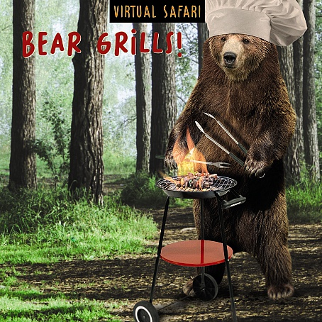 Virtual Safari Bear Grills Card