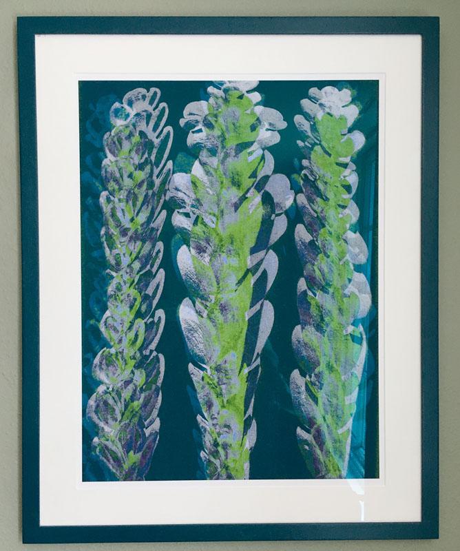 FRA099, Plantstudie 3 (1 of 5)