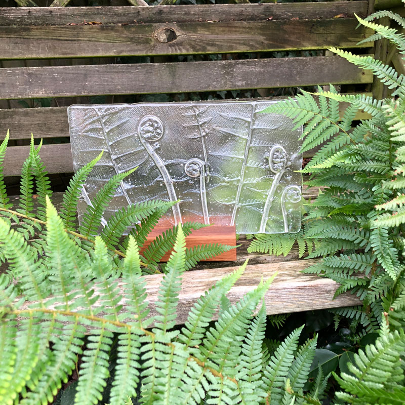 SHI309, Clear Ferns in block
