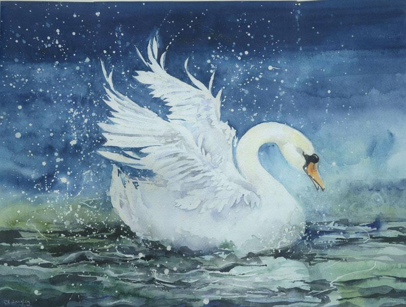 LON208, Swan Splash