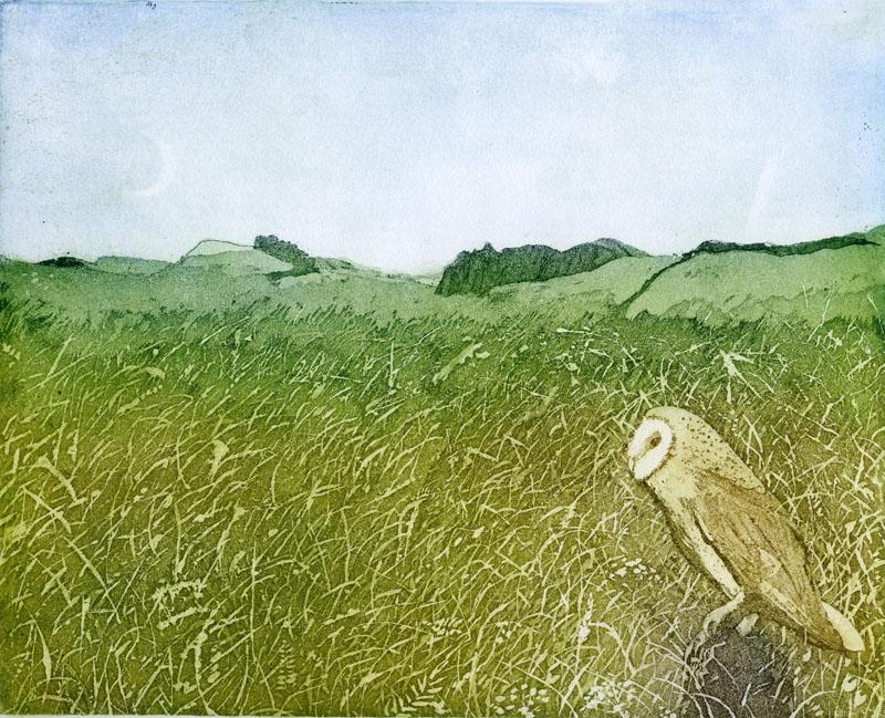 LON211, On the Watch, near Hadrian's Wall