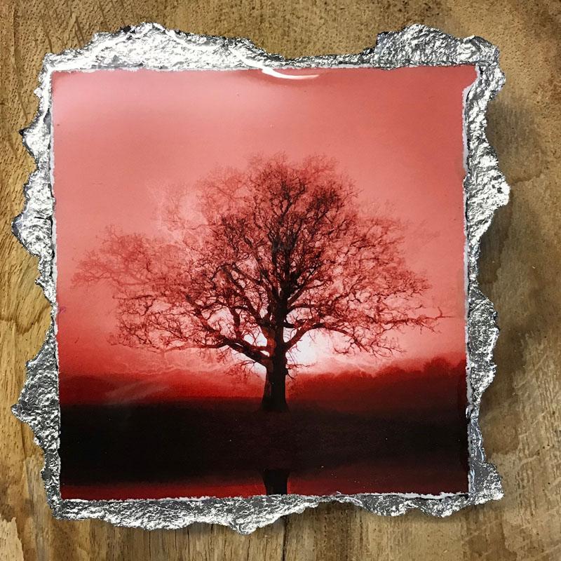WEL149, DUOTONE RISING SUN RED