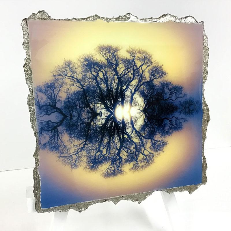 WEL135, Symmetree 20 Gold Blue Hue