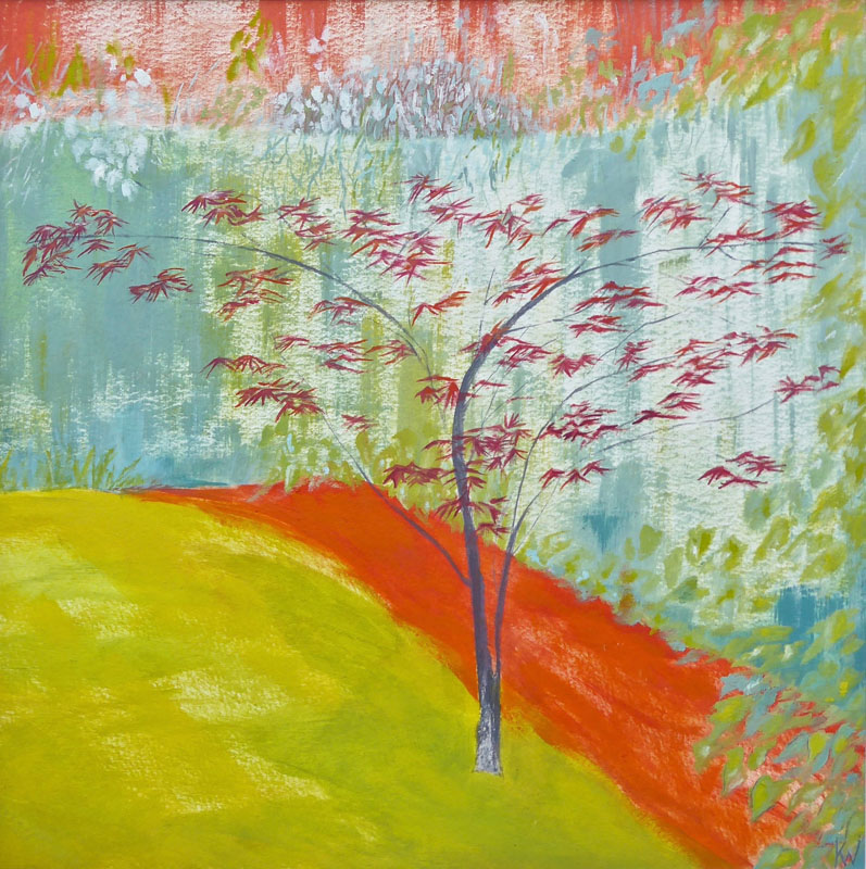 WHI023, Spring Acer