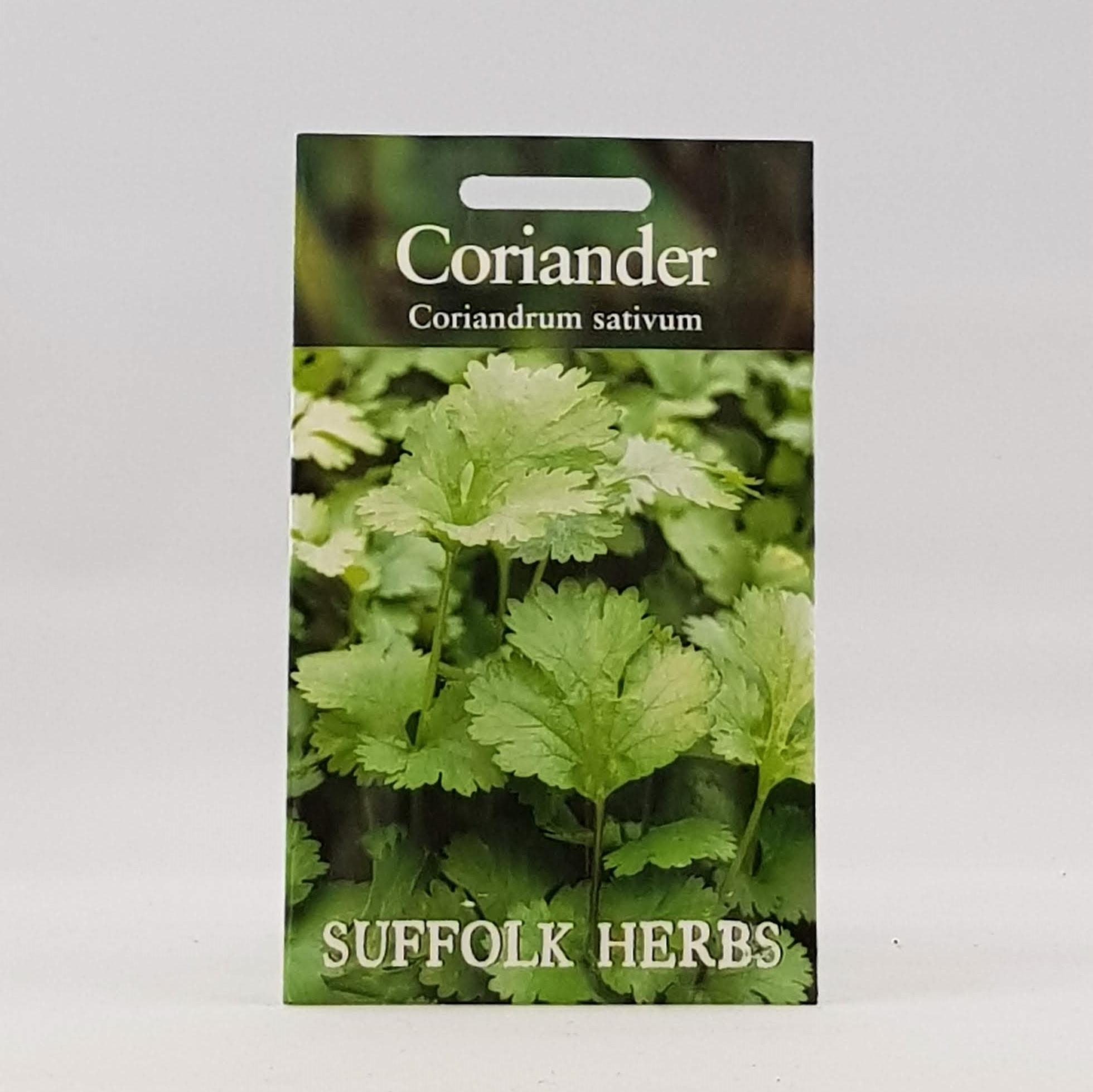 Coriander Sativum Seeds