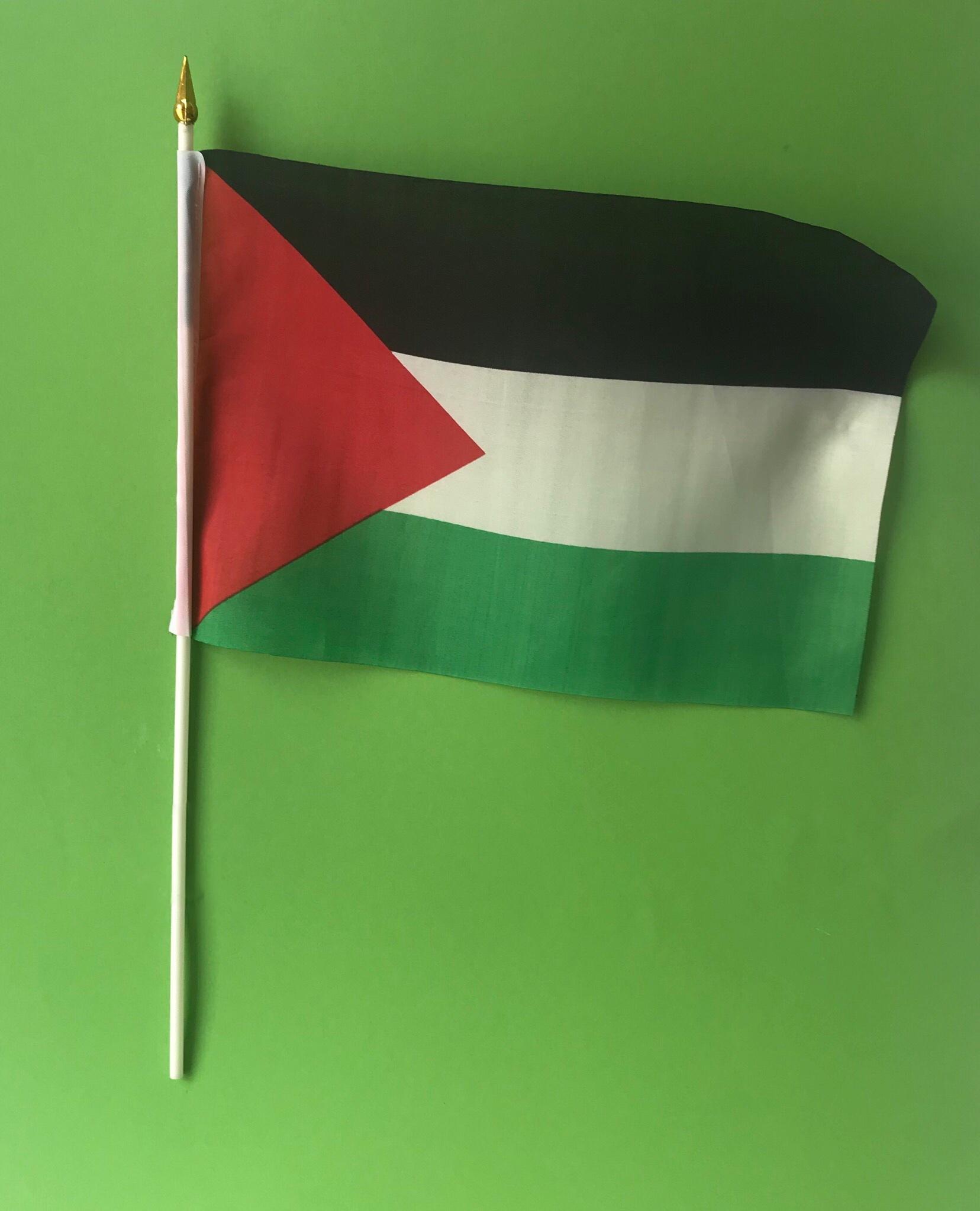 Lite flagg med stang