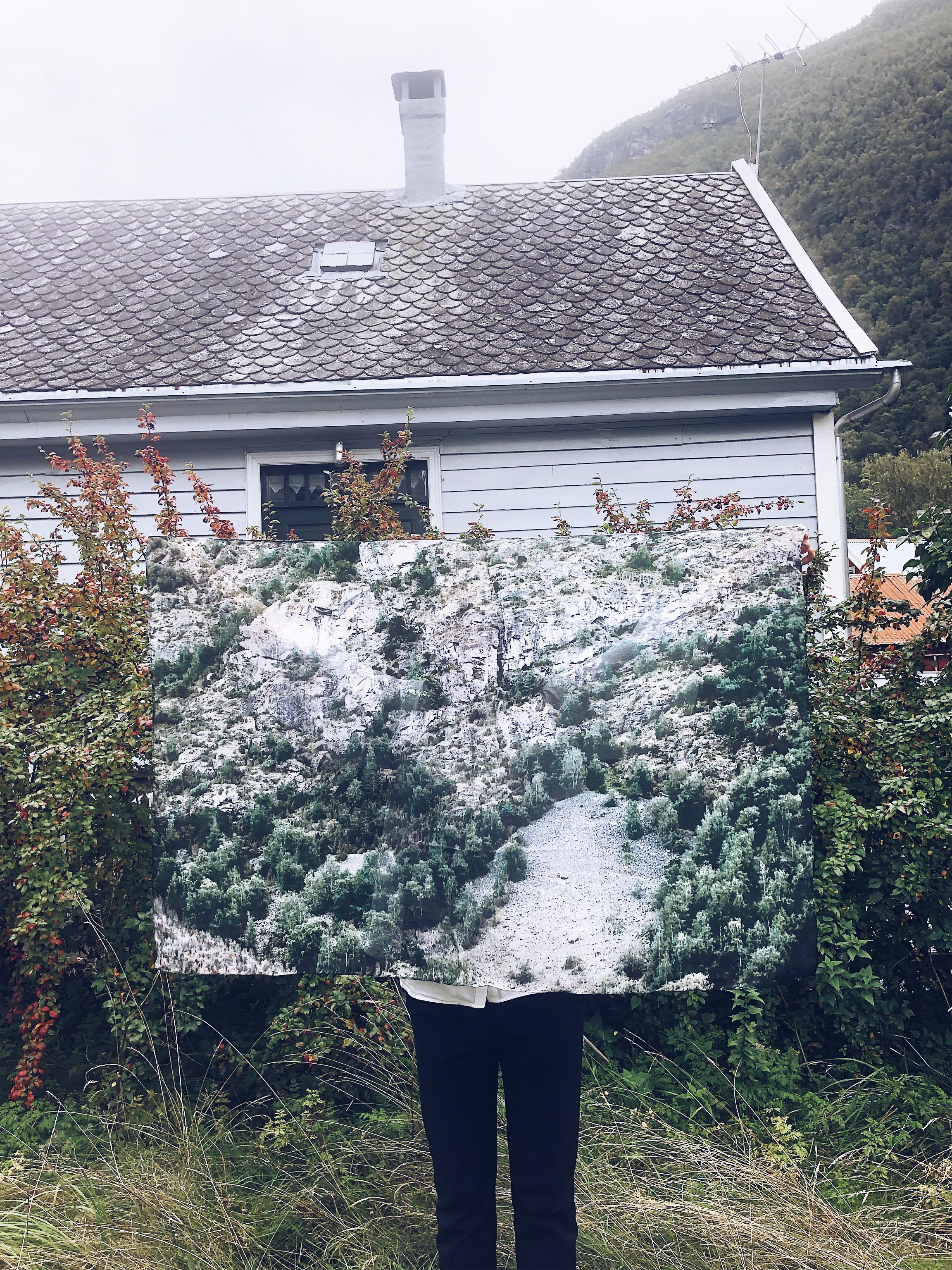 LÆRDAL silkeskjerf - Fjellsida