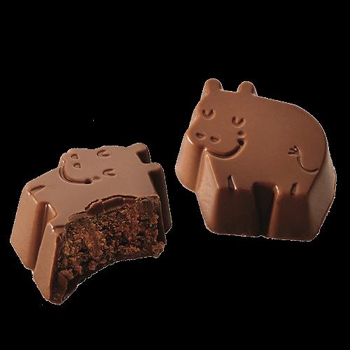 BARU - Dreamy hippos hazelnut truffle