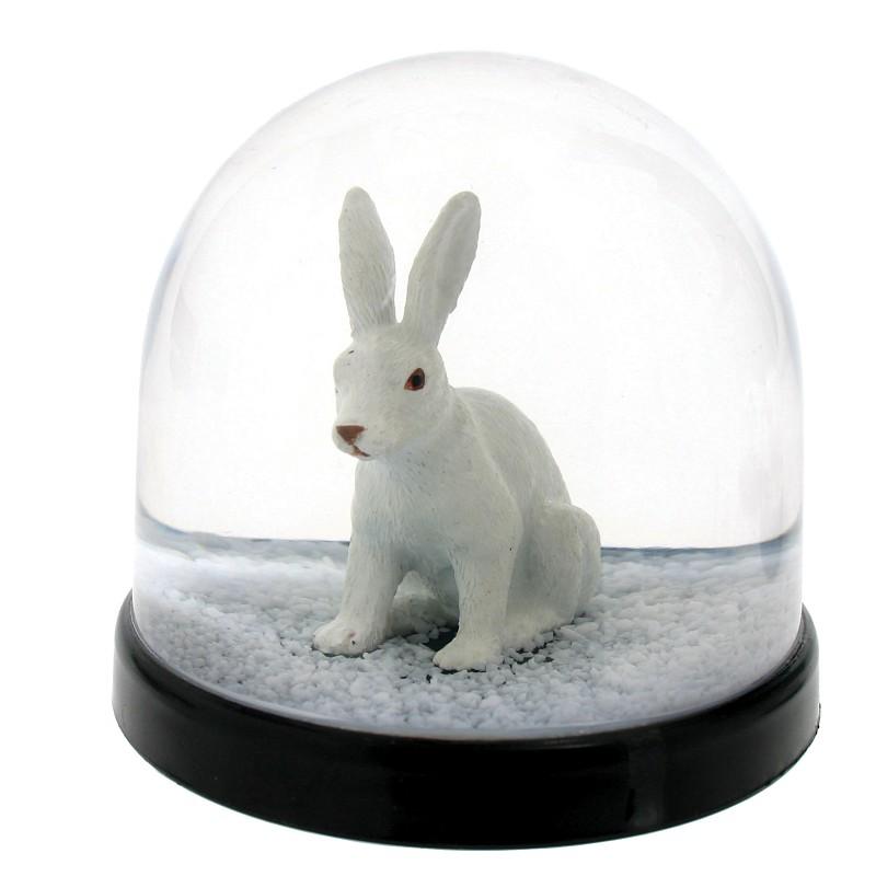Wonderball, kanin