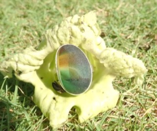 RE217 Eco-silver Sea Glass Ring Seaham Multi Earthly Browns/Greens and White UK N