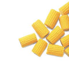 Half Corn Cobs 1kg