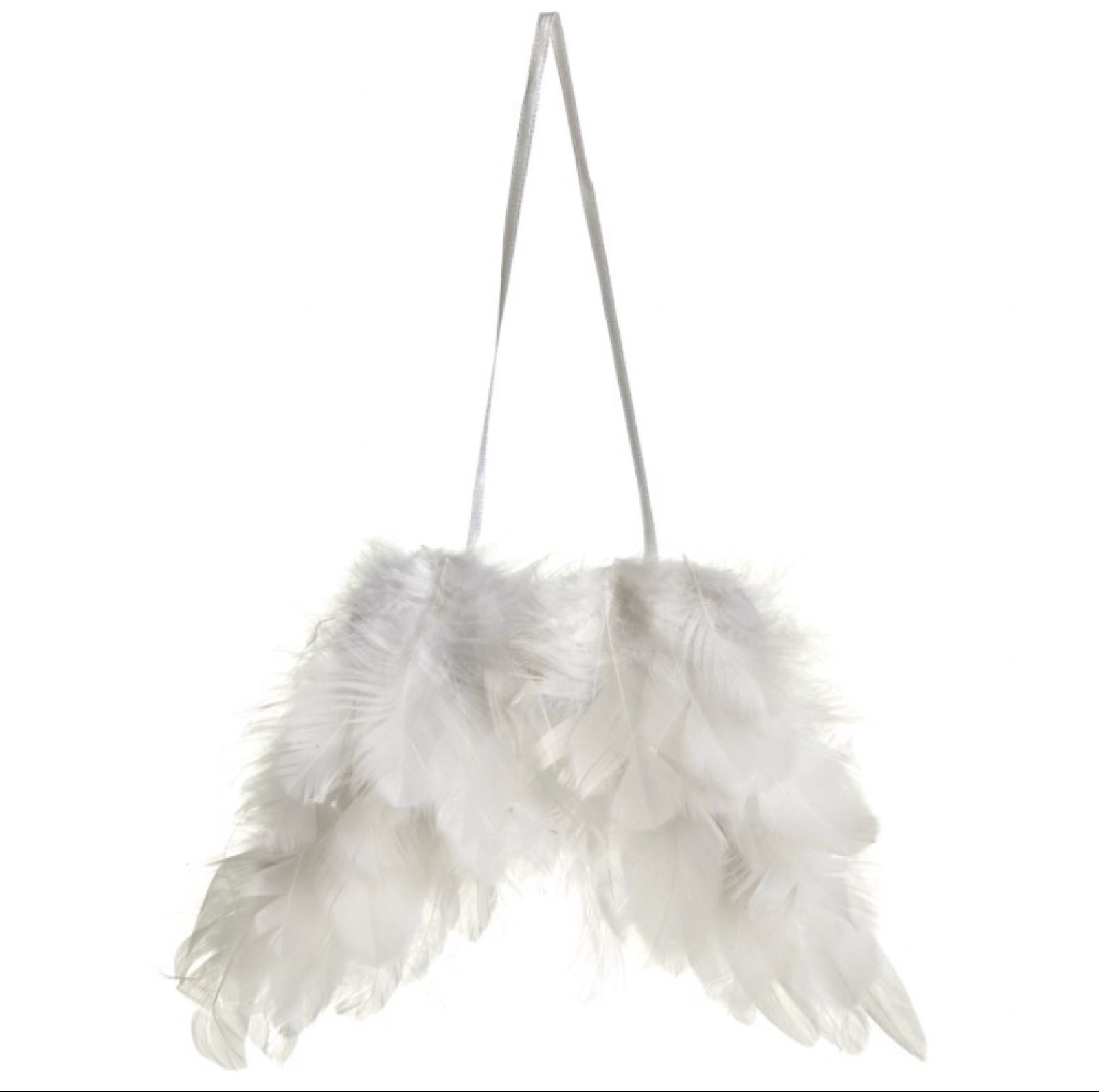 Angel Wings Feathered