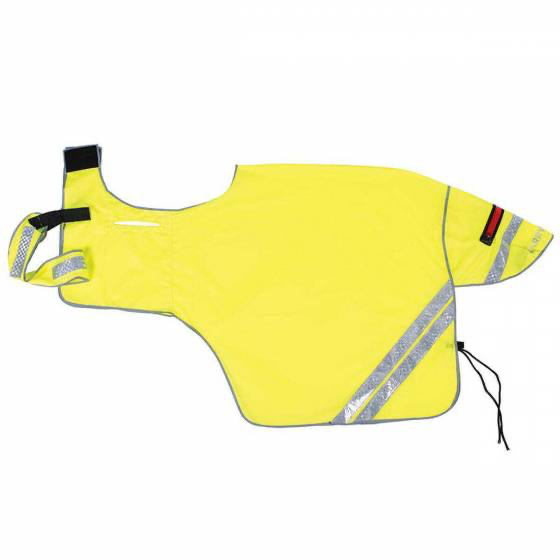 Harry Hall Hi Viz Net Ride on Exercise Sheet