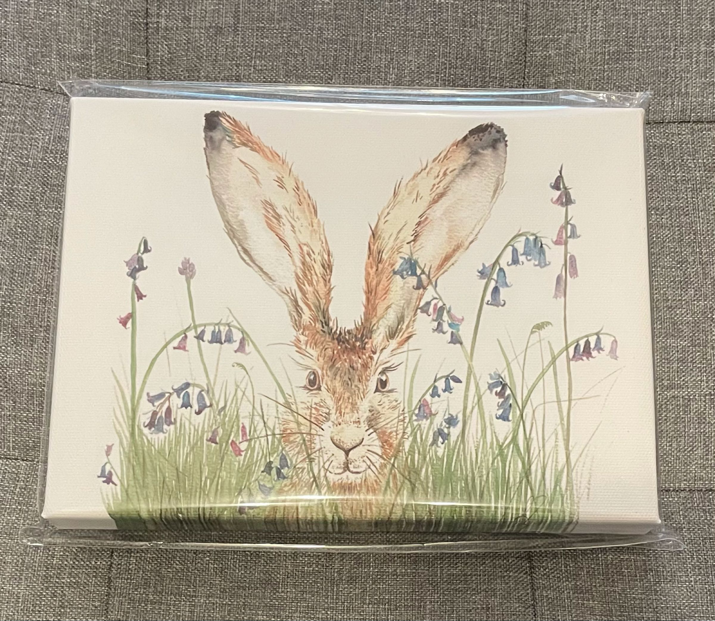 Curious Hare Canvas  by Sarah Reilly 15cmx21cm