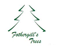 FOTHERGILL'S TREES LTD