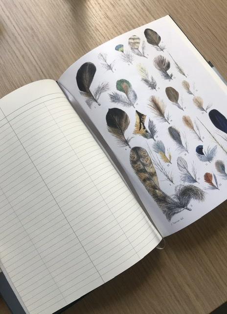 Observer's Notebook Birds