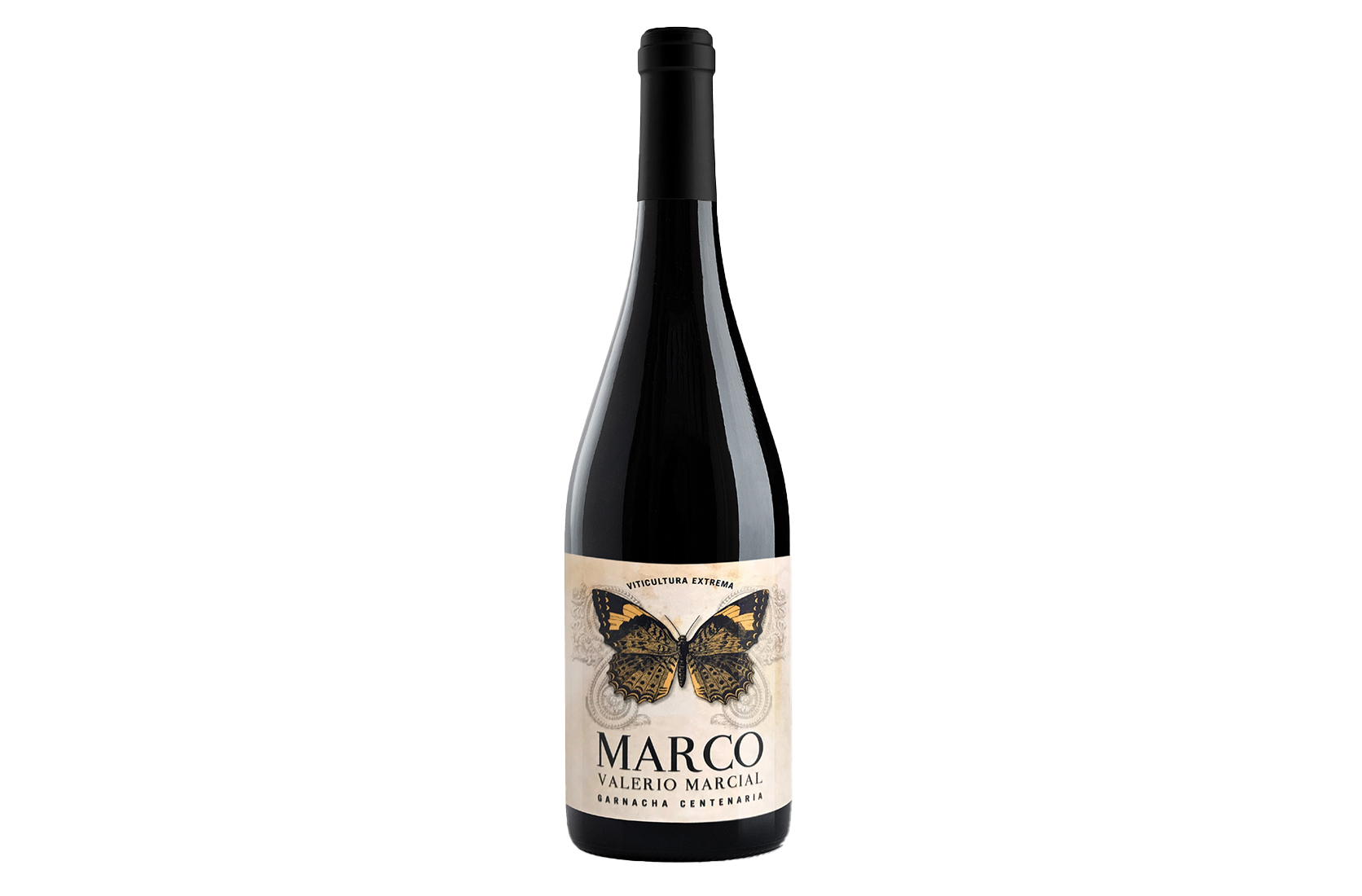 MARCO Valerio Marcial 2017