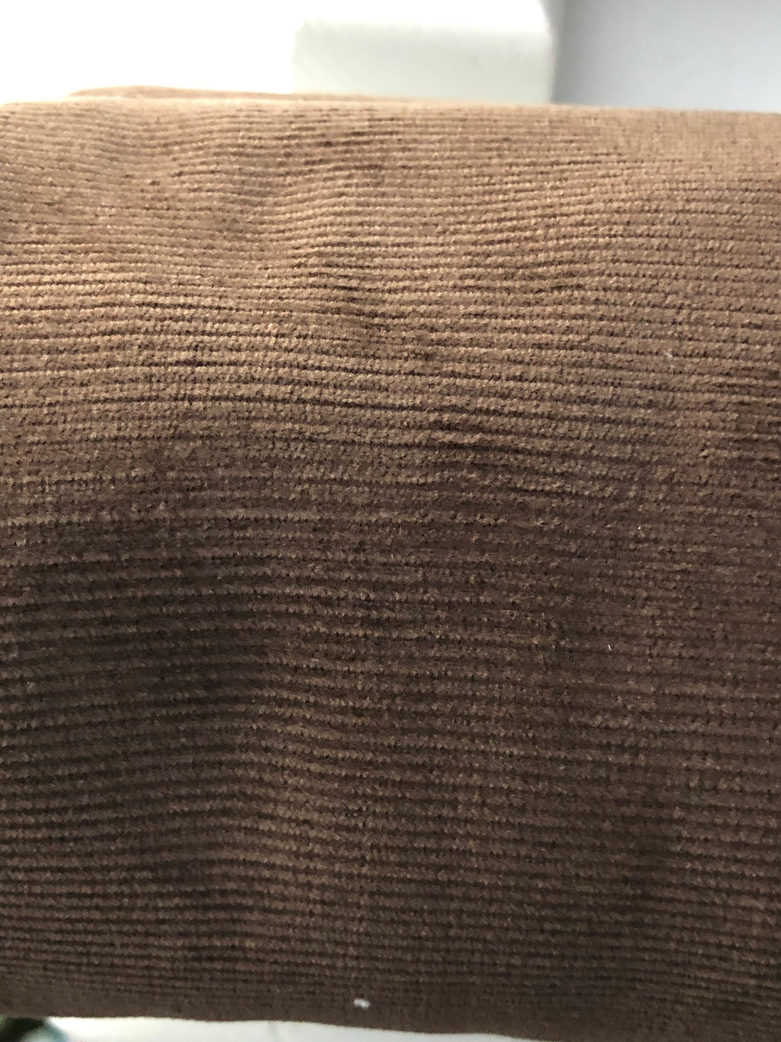 115cm Chocolate Brown Needlecord remnant