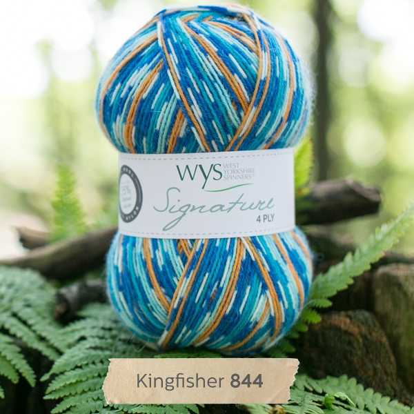 WYS Country Kingfisher 4ply sock yarn