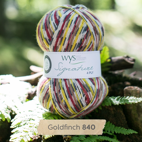 WYS Country Birds 4ply sock yarn