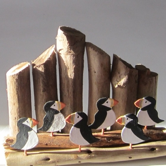 Six puffins on Driftwood