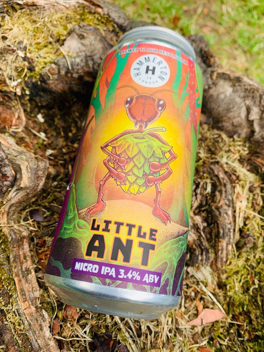 Hammerton | Little Ant | Micro IPA 3.4% 440ml