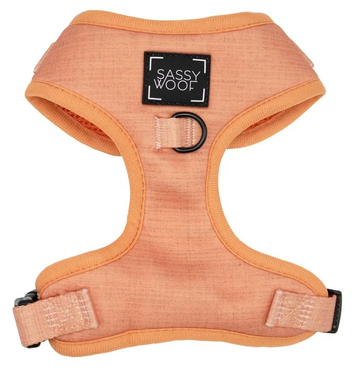 Apple cider adjustable harness