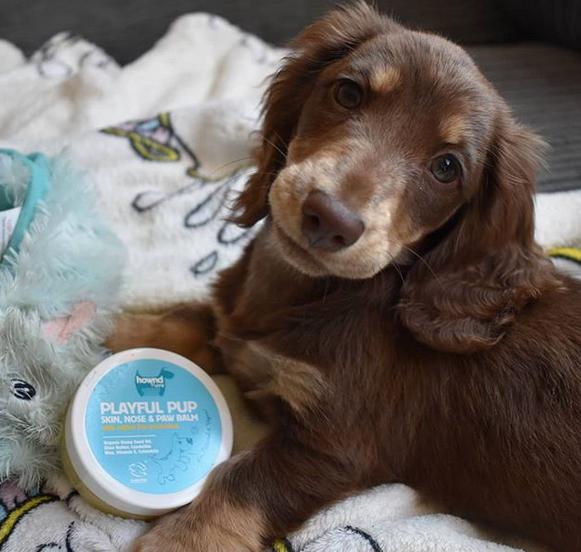 Playful pup Skin, nose & paw balm
