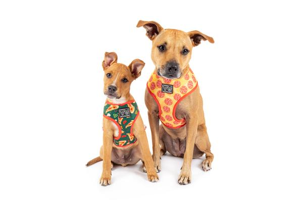 Pupperoni  Pizza Reversible Harness