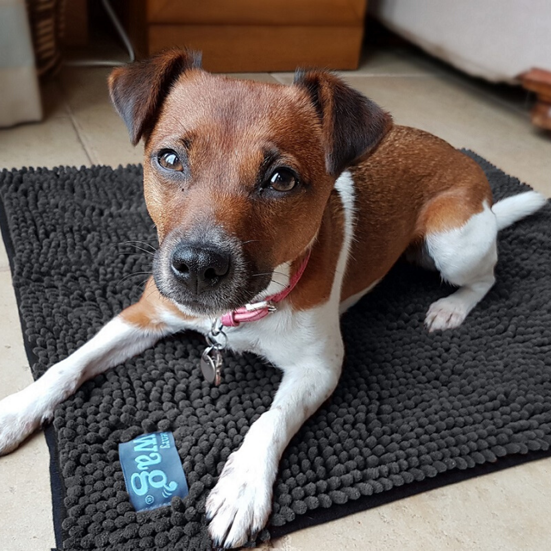 Microfibre Drying pet Mat