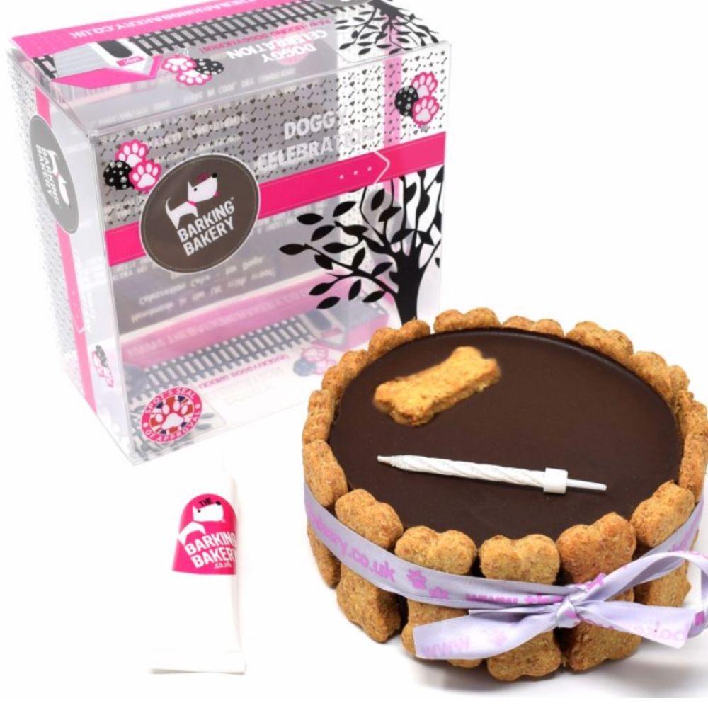 Birthday Cake - Carob