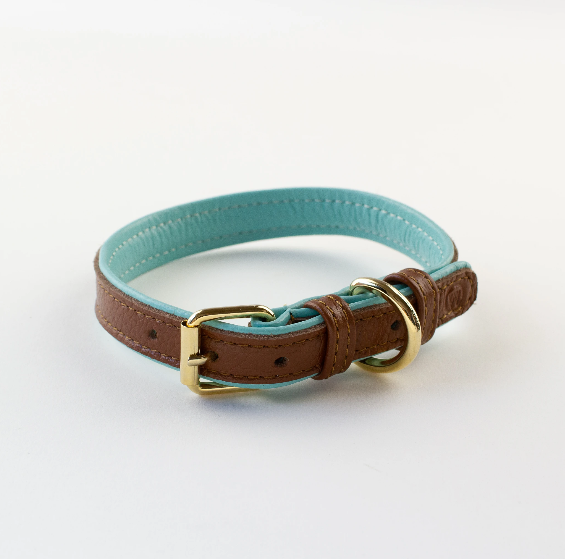 Two toned Collars (Brown and aqua)