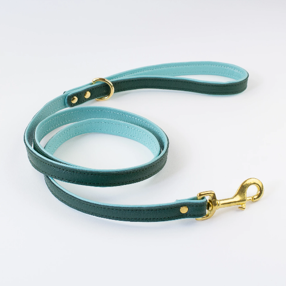 Two toned Leather Lead (Green and Aqua)