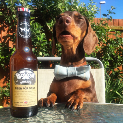 Dog Beer - Bottom Sniffer