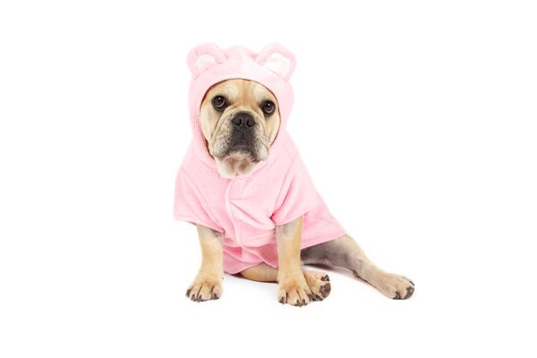 Pink & Blue Bear Bath Robes