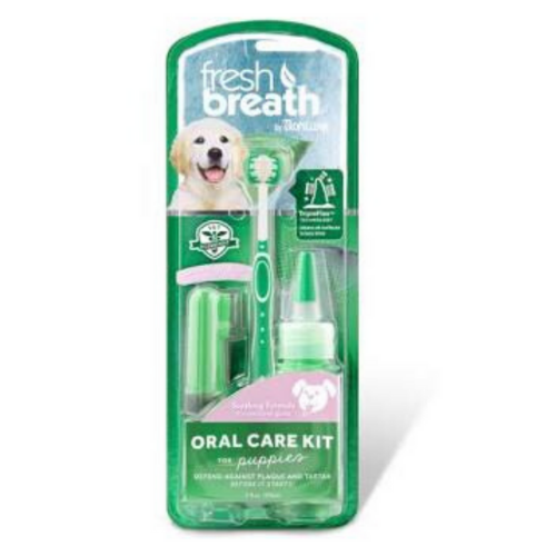 Puppy teeth cleaning kit
