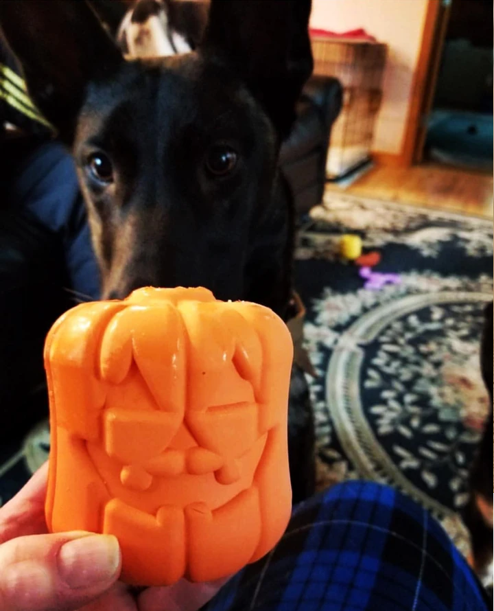 Jack o lantern chew toy & treat dispenser