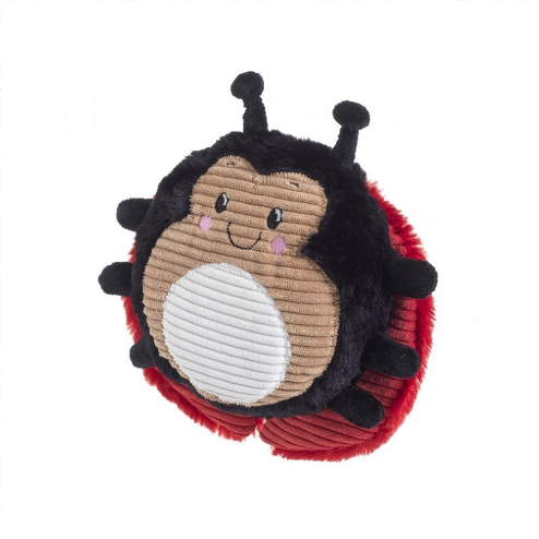 Really Squeaky Ladybird