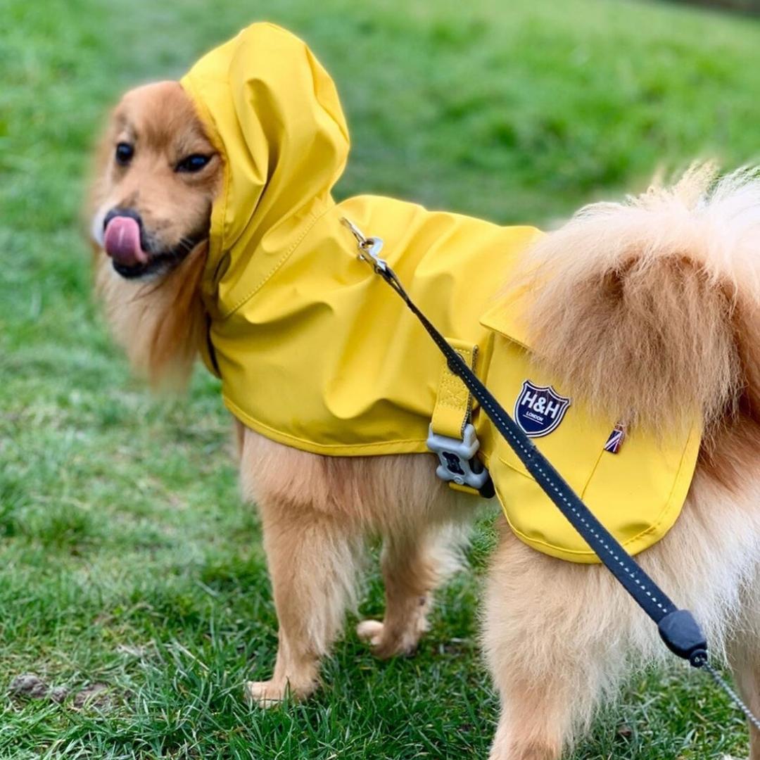 H & H waterproof raincoats