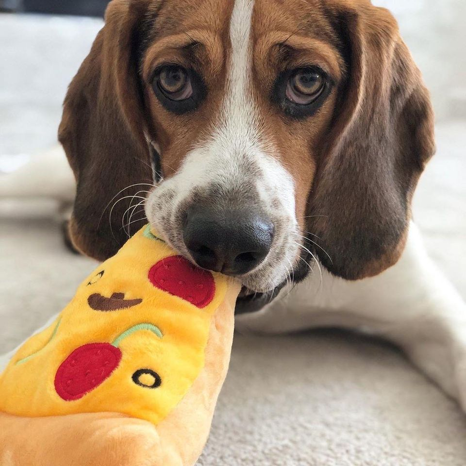 Pizza Slice Plush