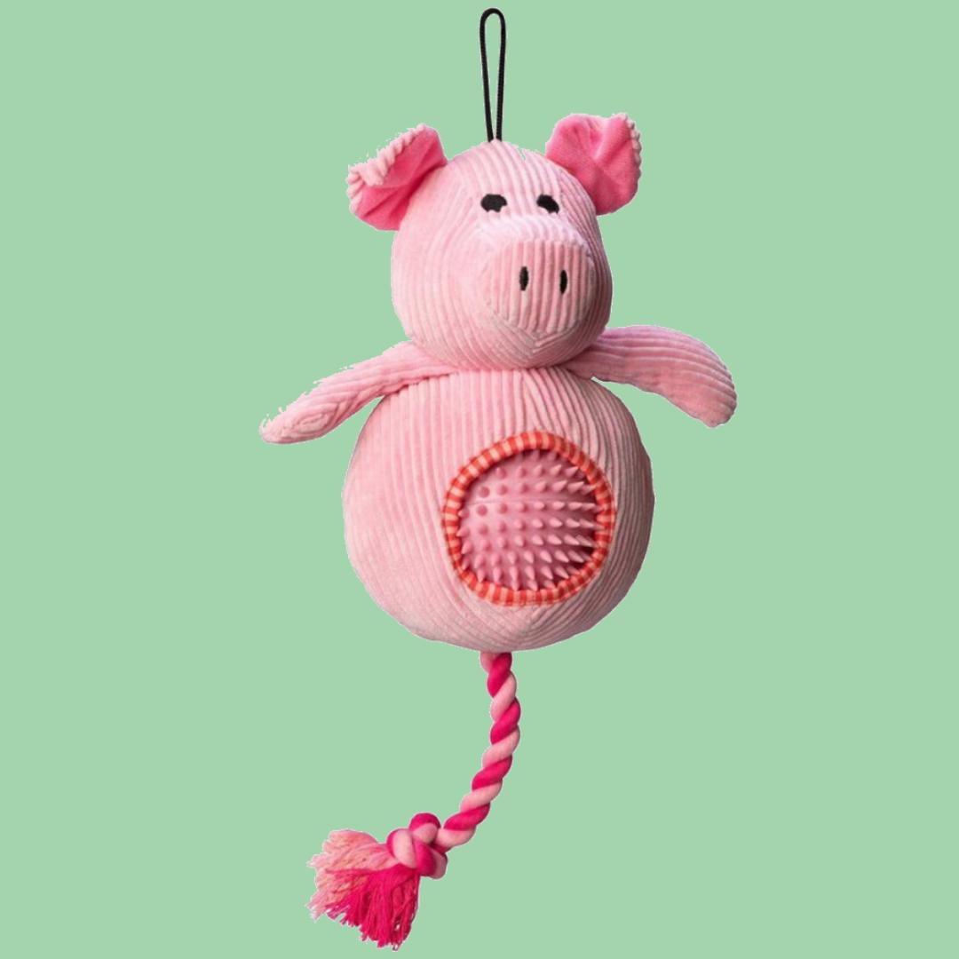 Clever Piggy
