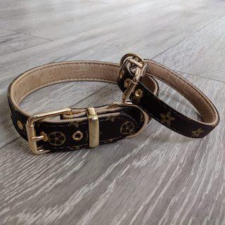 Chewy designer vuiton collar