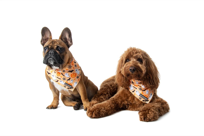 Spooky season bandana