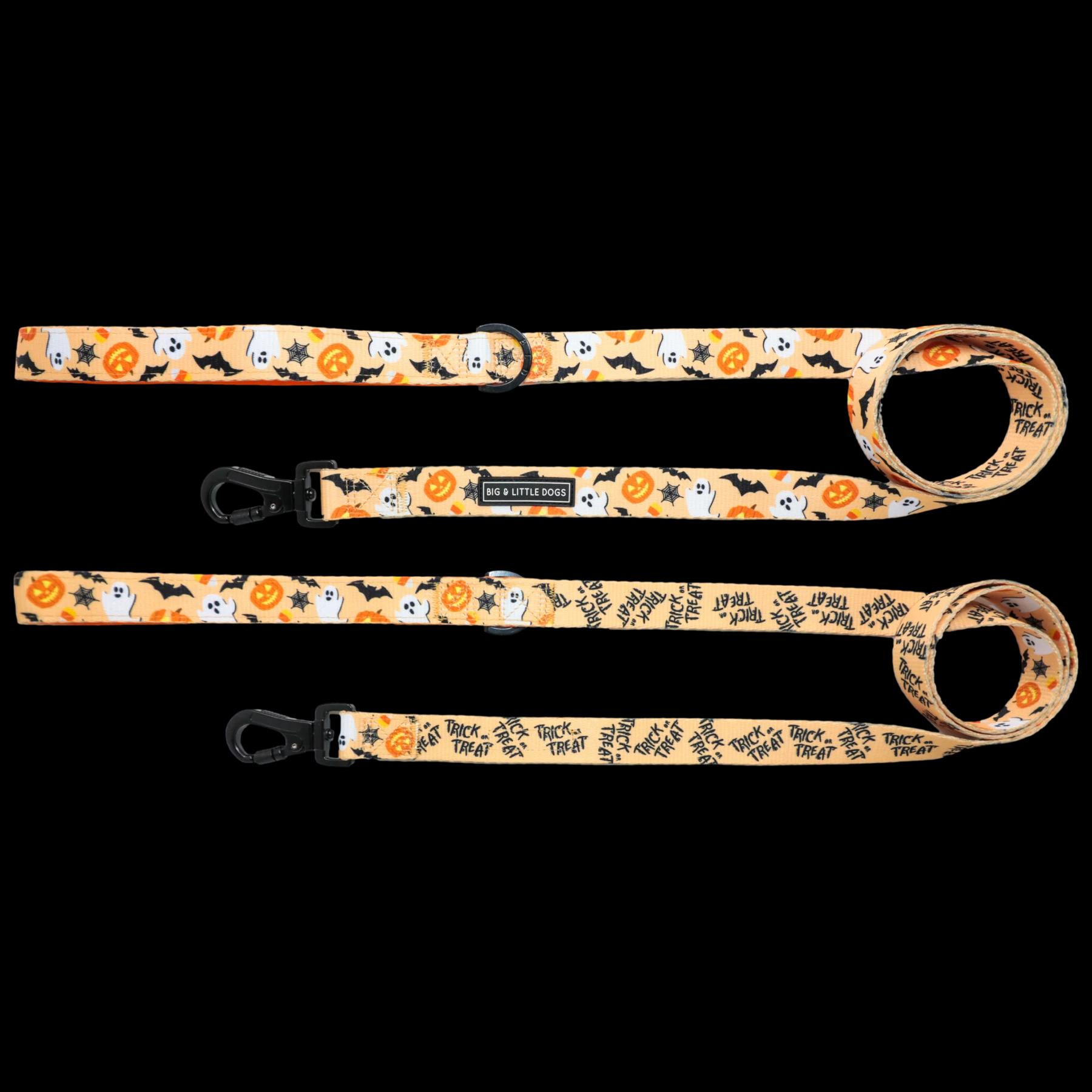 Spooky season leash