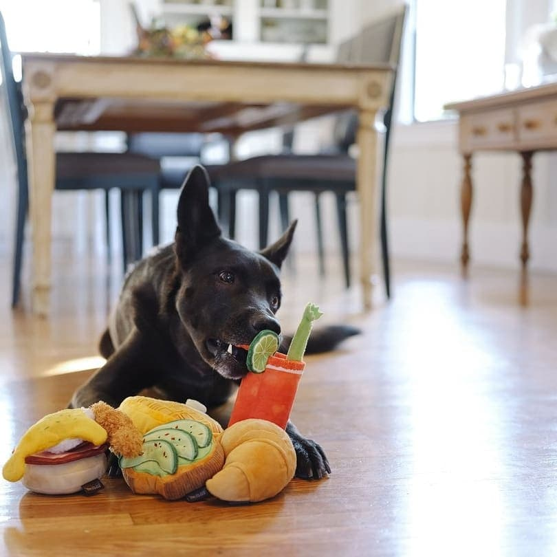 Barking Brunch toys